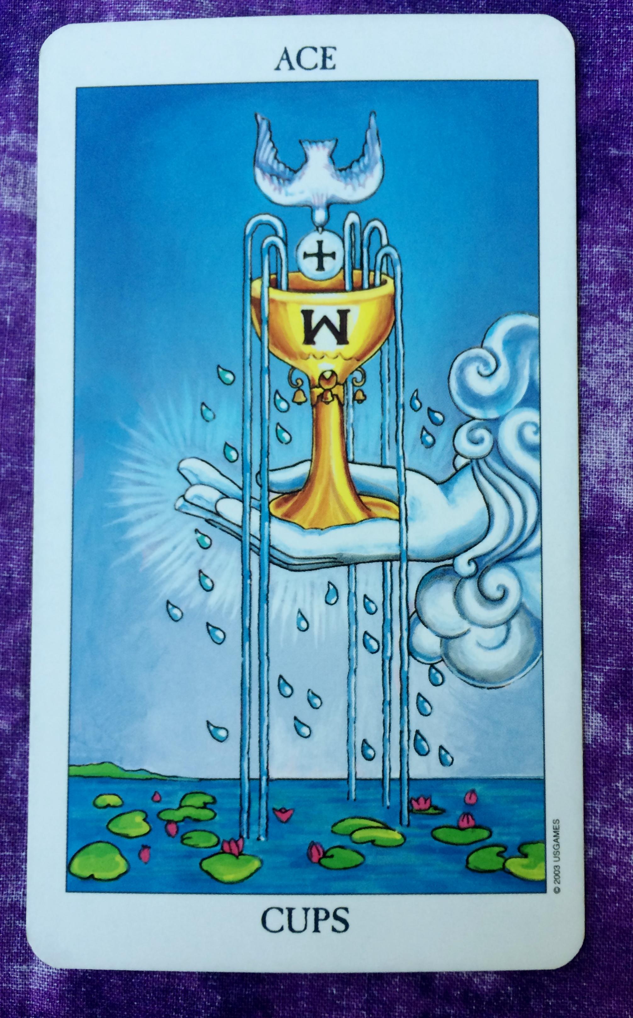 Ace of Cups | Ms  Joyce Tarot